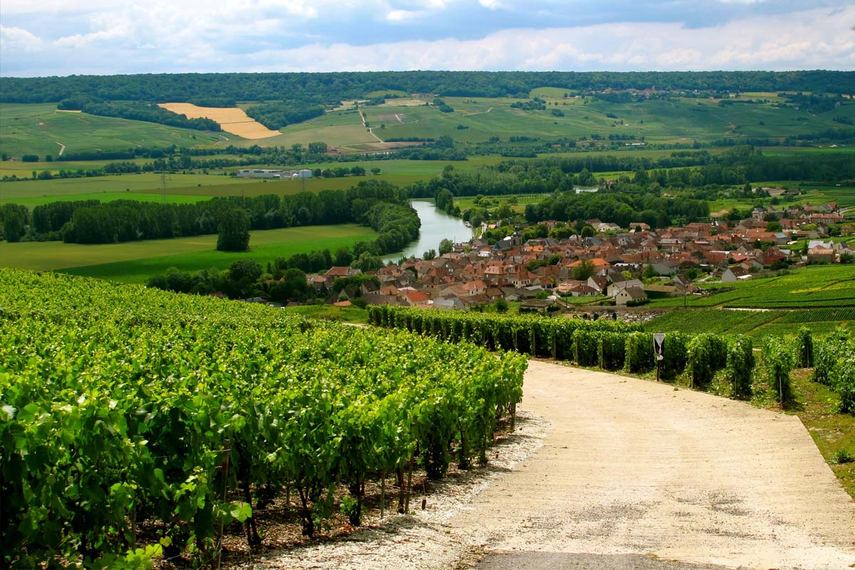 pokrajina-Chanpagne-v-franciji